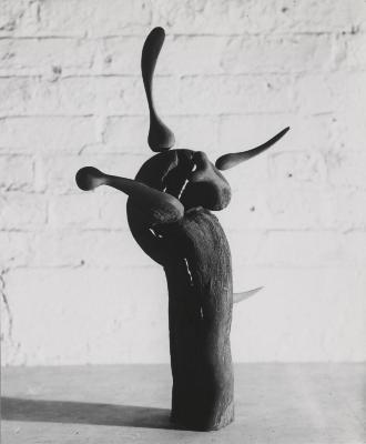Driftwood Sculpture