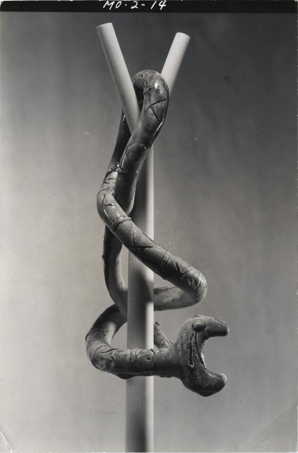 Snake, image 9