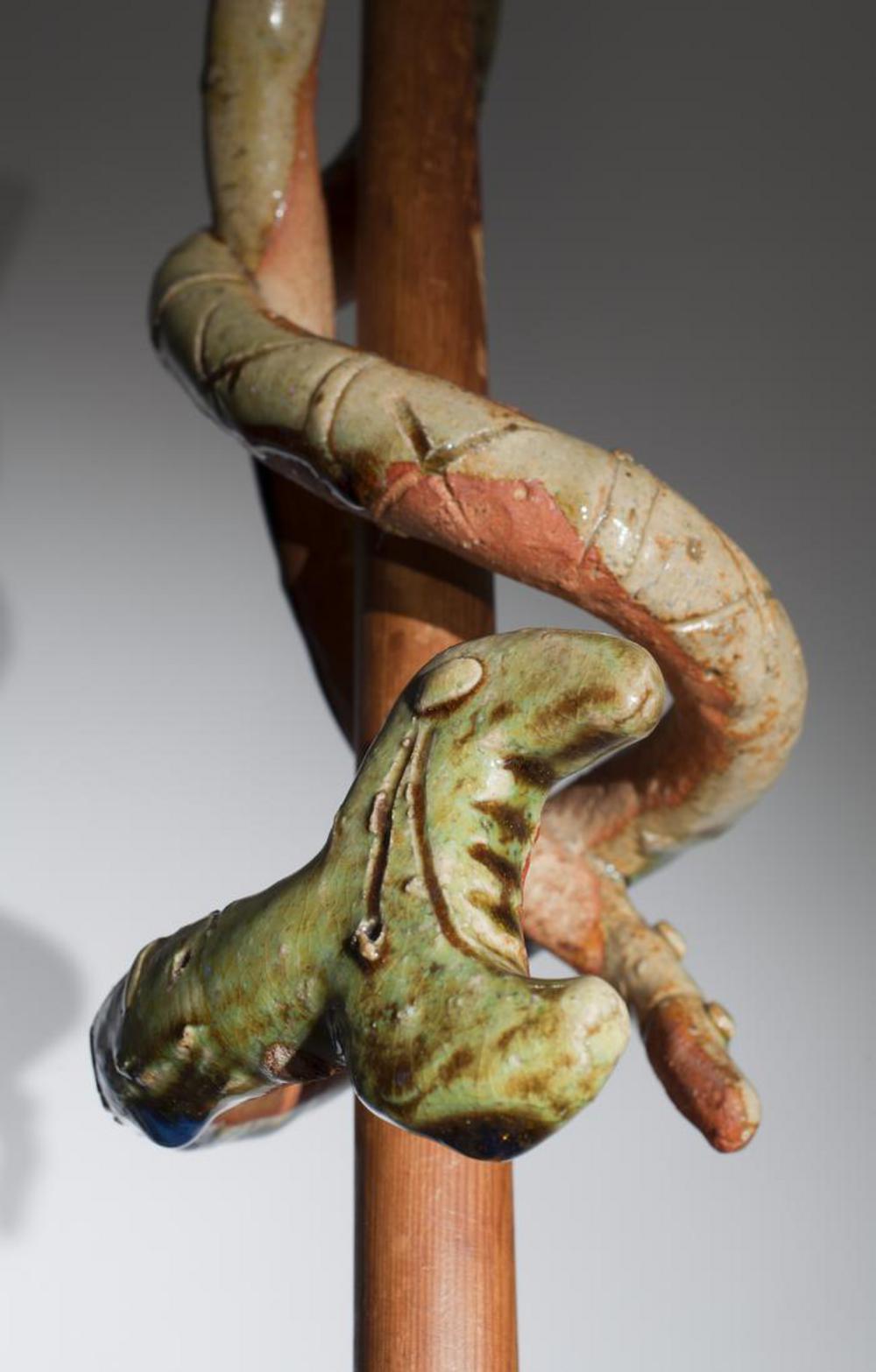 Snake, image 3