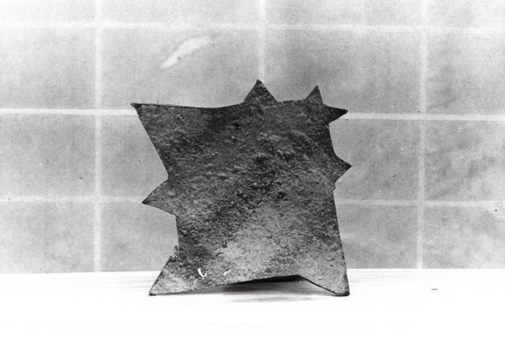 Dish, image 2